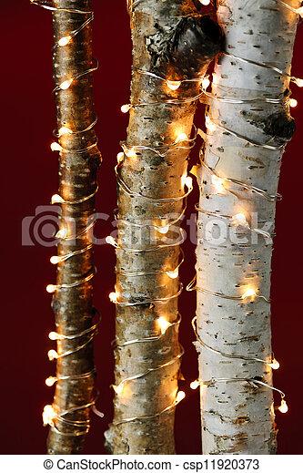 lumières, branches, noël, bouleau , csp11920373