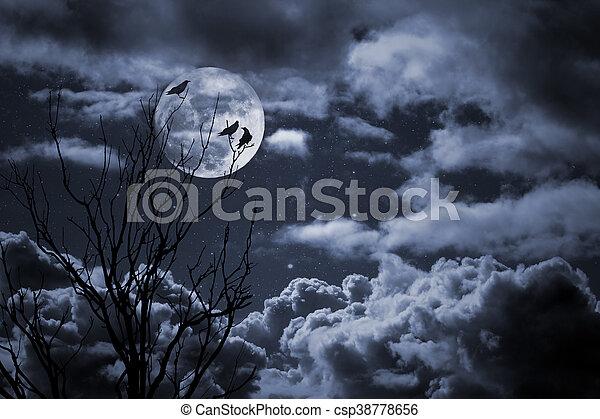 luna piena - csp38778656