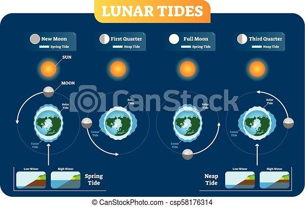 Solar Tides