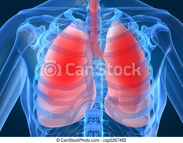 lung infection - csp2267482