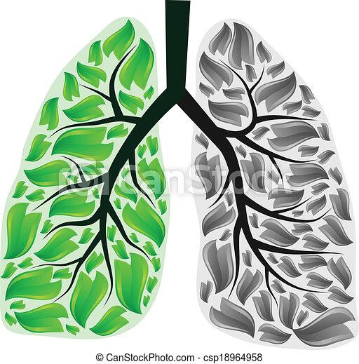 Lungs in danger - csp18964958