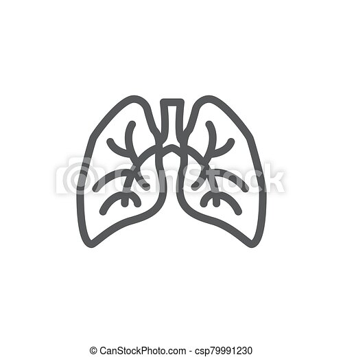 Lungs line icon on white background - csp79991230