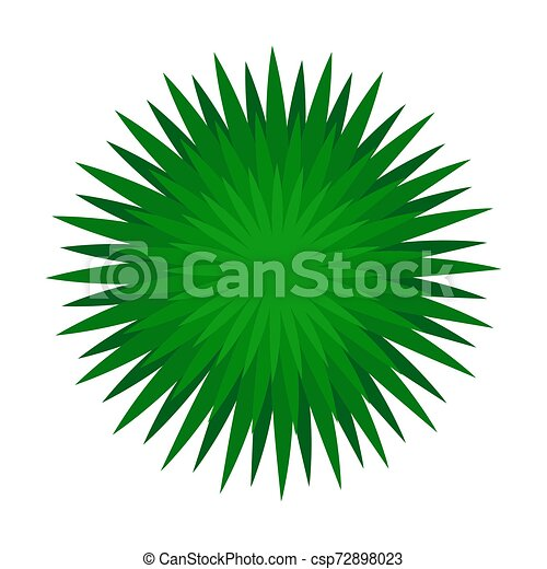 Lush bush. View from above. Vector illustration on a white background. - csp72898023