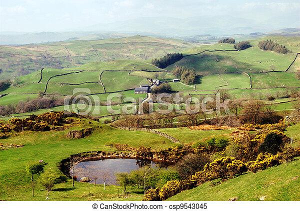 Lush green countryside, English Lake District - csp9543045