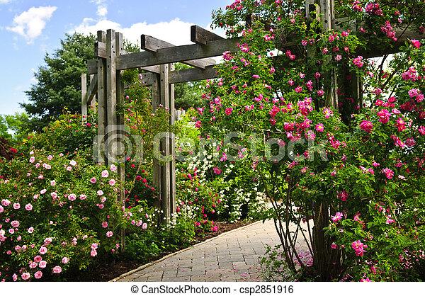 Lush green garden - csp2851916