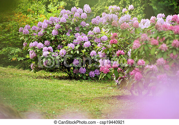 Lush landscaped garden with flowerbed and colorful plants - csp19440921