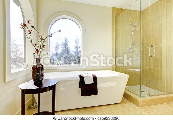 lusso, naturale, classico, bathroom., nuovo - csp9238290