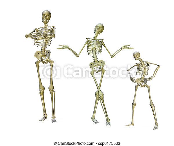 Komische Skelette - csp0175583