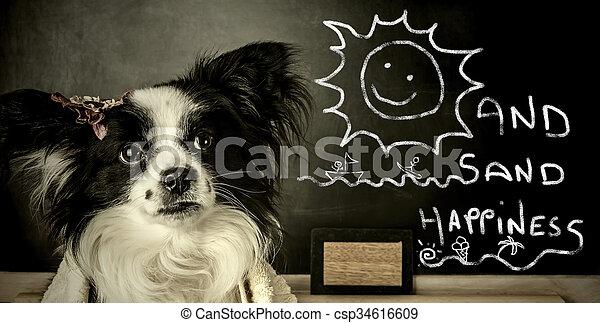 lustiges, sommer, hund, urlaub - csp34616609