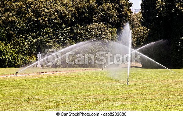 Luxury garden: irrigation - csp8203680
