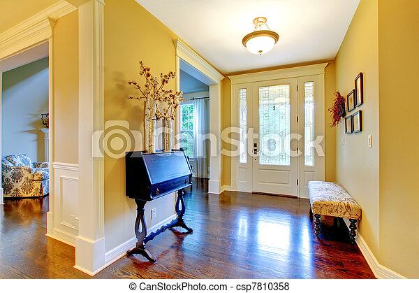 luxury home entrance and hallway in golden yellow hallway and
