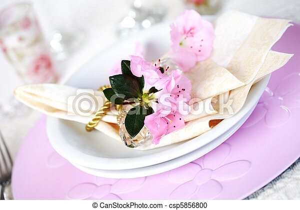 Luxury place setting - csp5856800