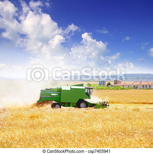 Combina cosechadora de cereales de trigo - csp7403941