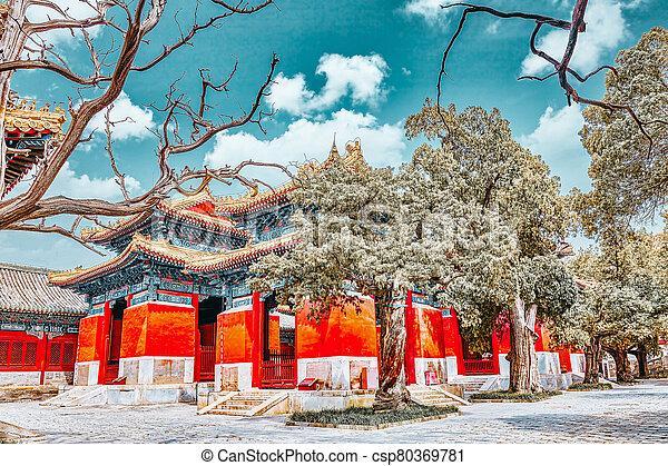 más grande, templo, beijing, china., confucius, confuciano, segundo - csp80369781