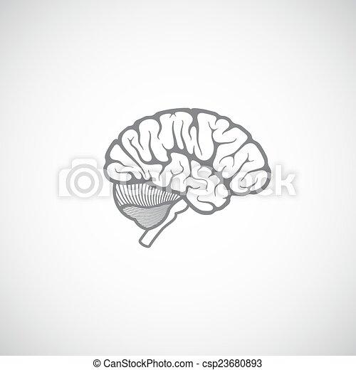 mänskligt förstånd, illustration, vektor - csp23680893