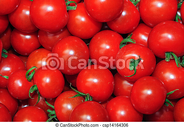 många, uppe, tomaten, frisk, nära, röd - csp14164306