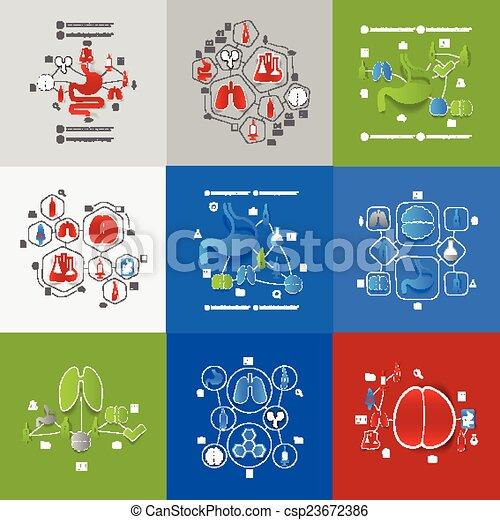 médecine, autocollant, infographic - csp23672386