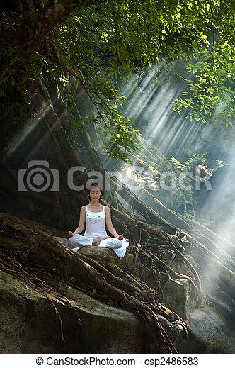 méditation - csp2486583