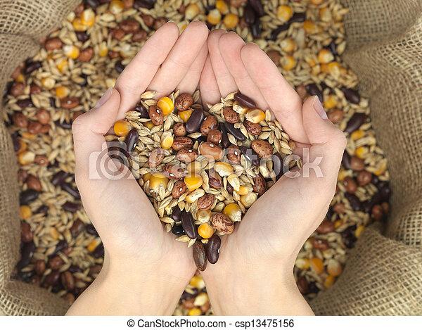 mélange, grain, coeur - csp13475156