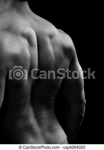 músculos, forte, costas, muscular, homem - csp4264020