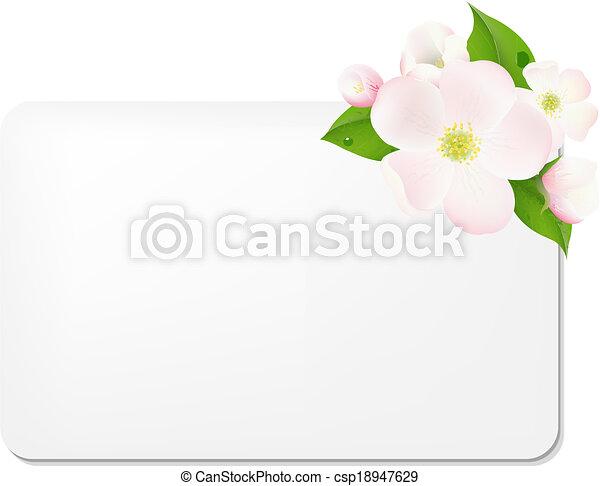 maçã, tag presente, árvore, em branco, flores - csp18947629