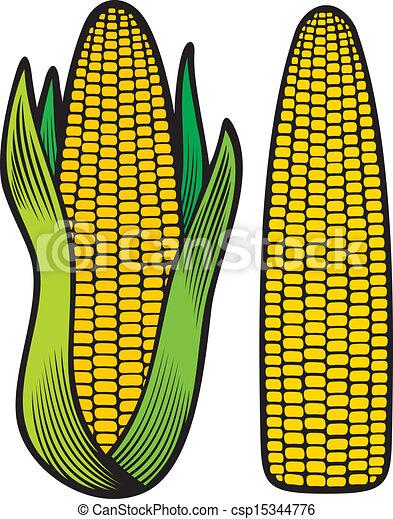 maïs - csp15344776
