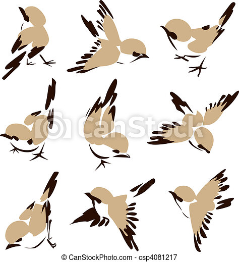 mały, ptak, ilustracja - csp4081217