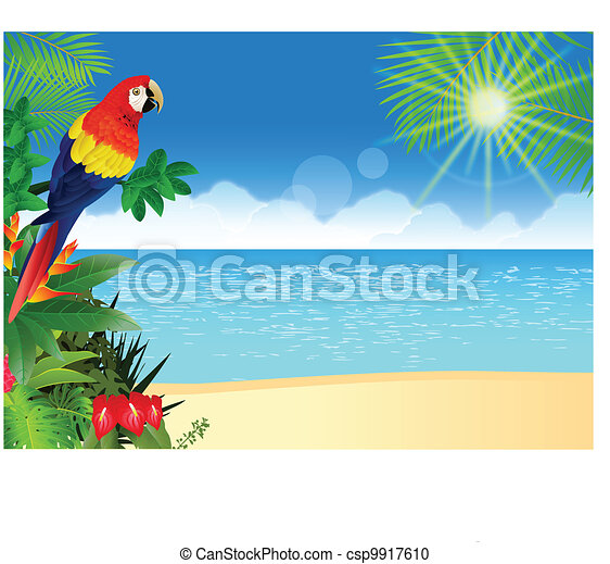 vector illustration of macaw with tropical beach background vector rh canstockphoto com Beach Party Clip Art Beach Party Clip Art