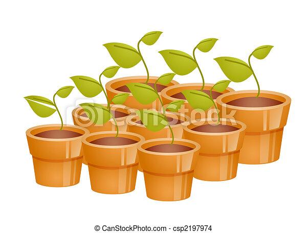 blanco, macetas, grupo, plano de fondo, plantas de semilla dibujo
