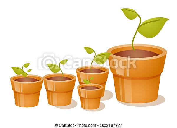 blanco, macetas, grupo, plano de fondo, plantas de semilla