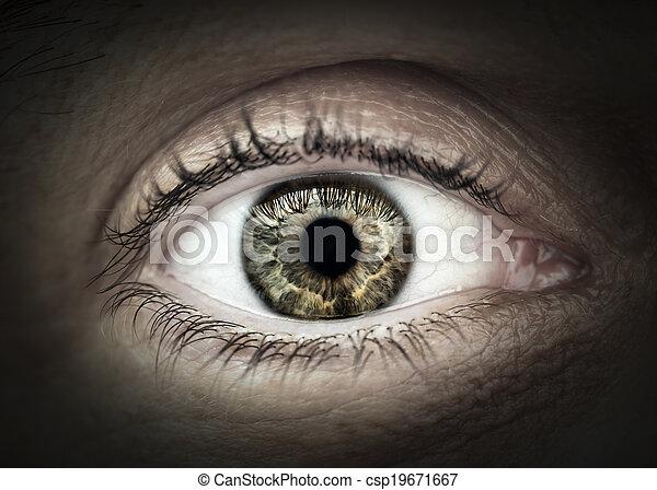 macro , αρσενικό , closeup , μάτι  - csp19671667