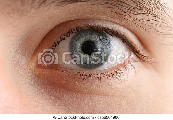 macro , γκρο πλαν , μάτι , ανθρώπινος  - csp6504900
