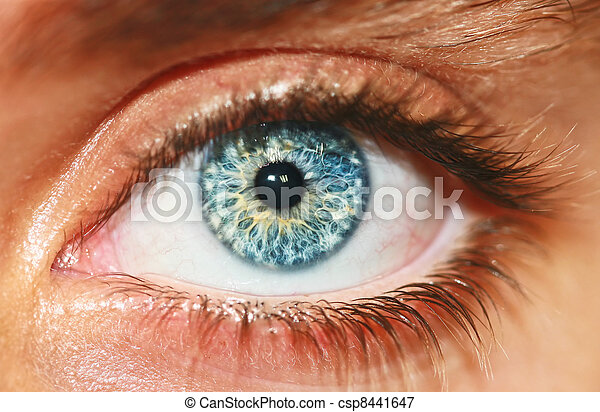 macro , μάτι , ανθρώπινος , βλέπω  - csp8441647