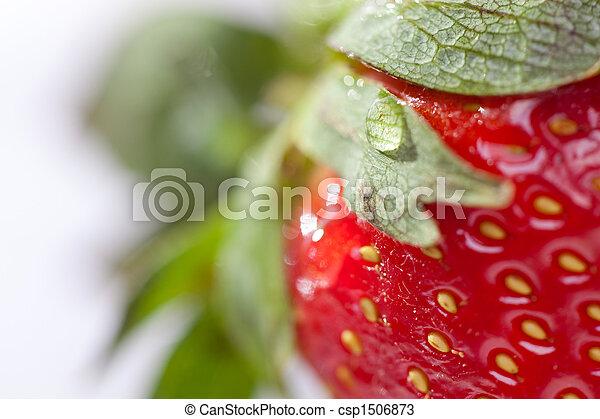 macro, fresa - csp1506873