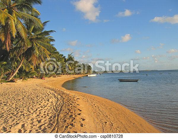 madagascar, ø, nosy, sainte, træer, sand, gul, boraha, håndflade strand - csp0810728