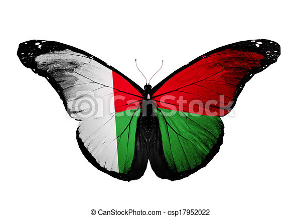 Madagascar Flag Butterfly Isolated On White Background Clip Art - Madagascar flag