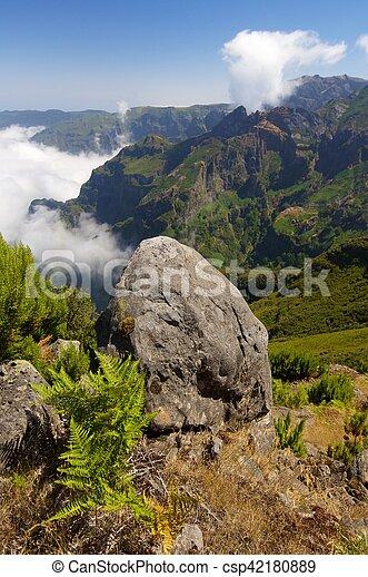 Madeira - csp42180889