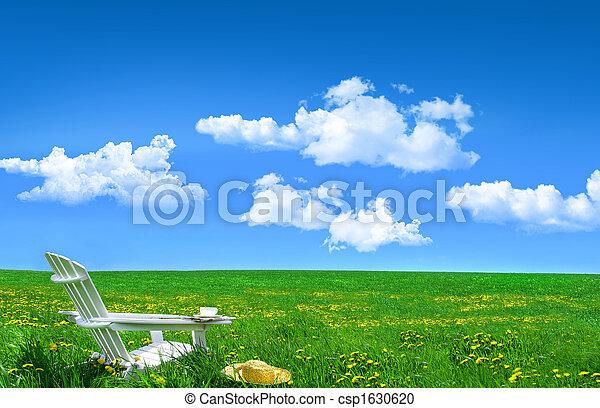 madeira, campo, dandelions, chapéu branco, cadeira, palha - csp1630620