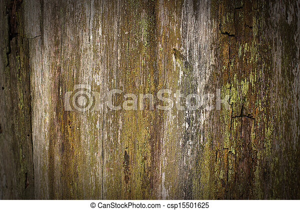 madeira, fundo - csp15501625