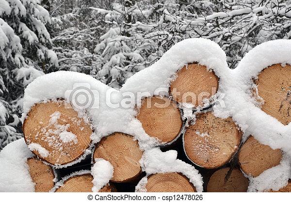madeira, pilha, inverno - csp12478026