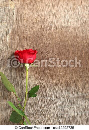 madeira, rosa, único, experiência vermelha - csp12292735