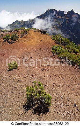 Madeira - csp36062129