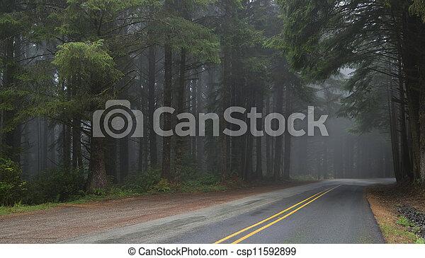madeiras, através - csp11592899
