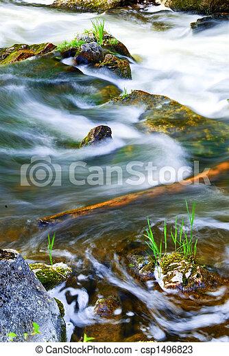 madeiras, através, rio - csp1496823