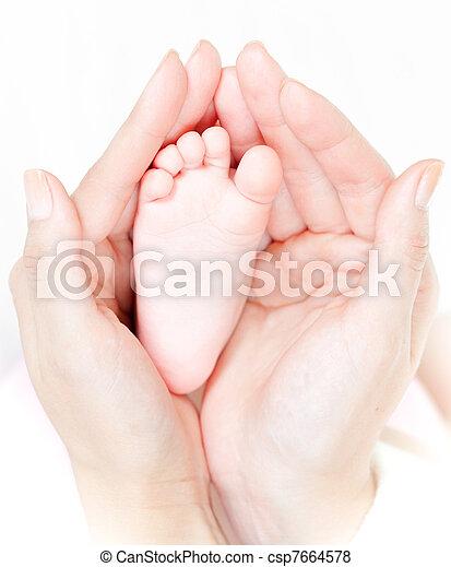 madre, bambino, custodire, tenerezza, attentamente, mani, piede - csp7664578
