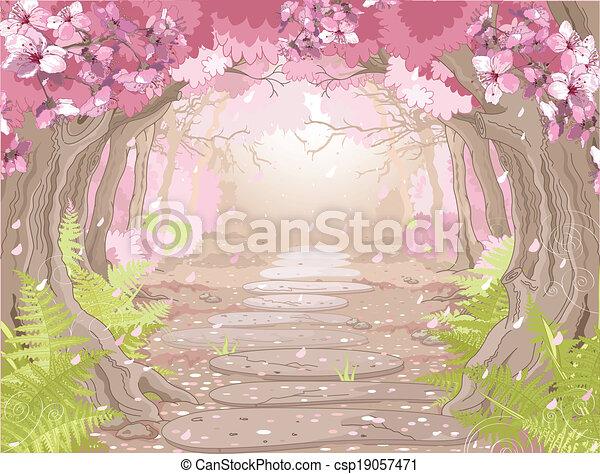 Magic spring forest - csp19057471