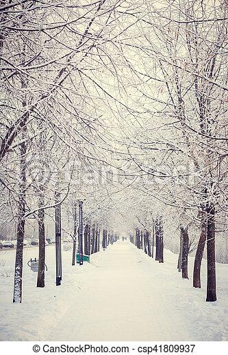 https://comps.canstockphoto.ca/magic-winter-way-stock-photos_csp41809937.jpg