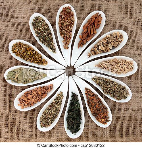 Magical and Medicinal Herbs - csp12830122