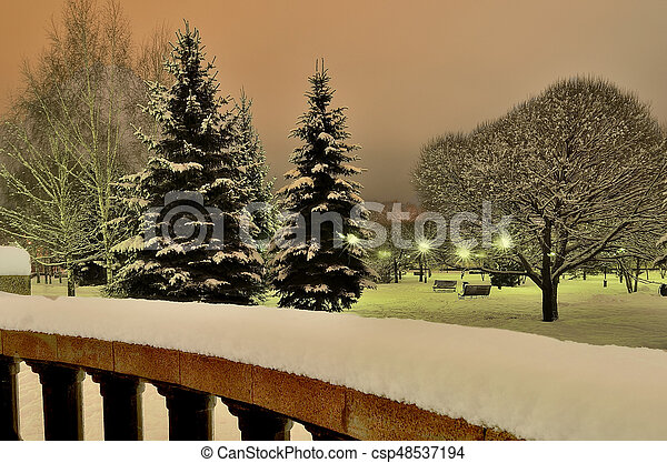 Magnificent winter landscape in the city park at night - csp48537194