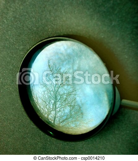 magnified tree - csp0014210